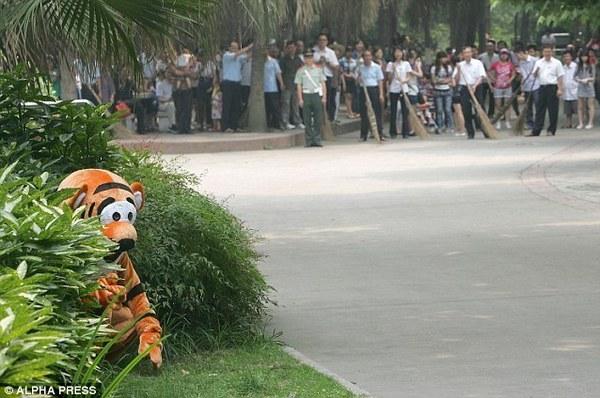 Anu chjappu à Tigrù