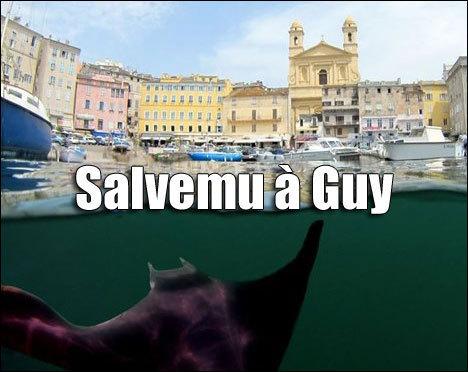 """U remake corsu di """"Sauvez Willy"""" (ritrattu Corsica Photosub)"""