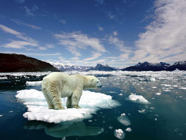 Aiò, servici! Perchè u cerbellu umanu ùn vole sente parlà di u cambiamentu climàticu