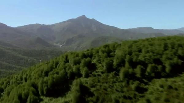 Chì hè u raportu trà a valle d'Orezza è Star Wars ?
