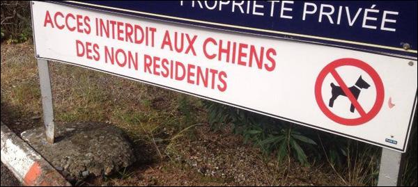 Cani residenti : anticustituziunali ?