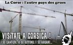 """In Corsica ci hè di più """"grues"""" ch'è stàntare"""