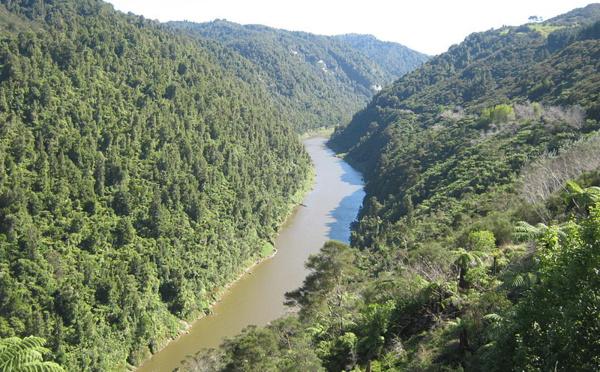 Whanganui : u fiume chì hè diventatu una persona